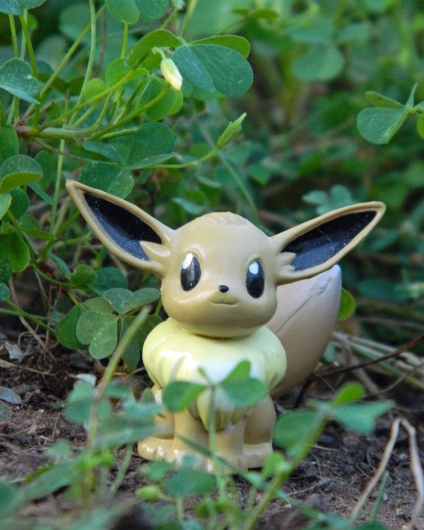 A Wild Eevee Appears!